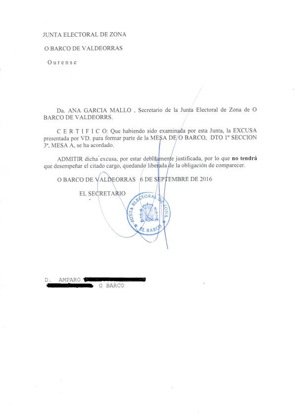 admisic3b3n-alegaciones-amparo-161